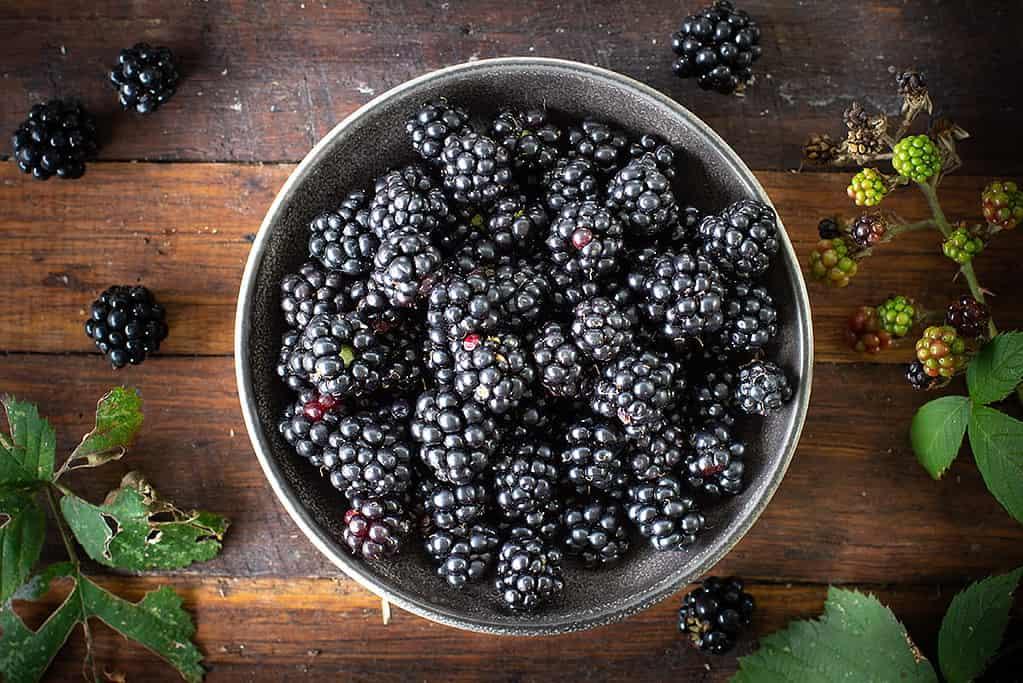 Sugar Free Blackberry Compote